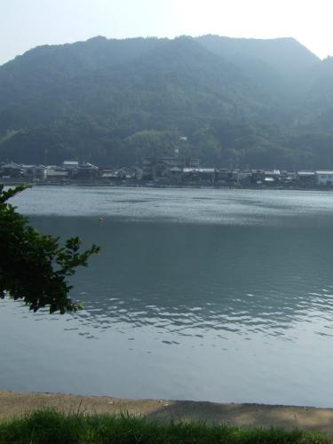 萩の橋本川