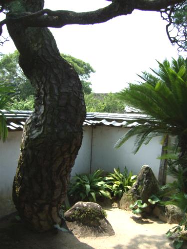 katsura-kogoro3