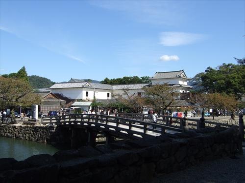 hikonejo-205