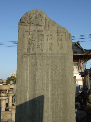 takahashi-taichiro4