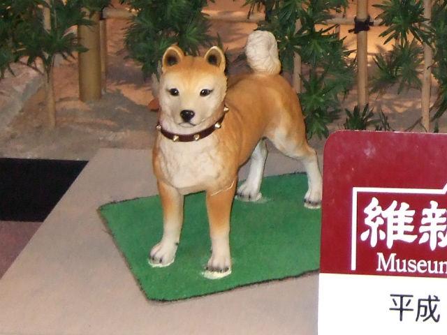 「維新ふるさと館」西郷隆盛の飼い犬つんと記念撮影